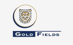 Gold Fields Logo